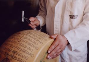 parmigiano-reggiano-espertizzazione1_800x562