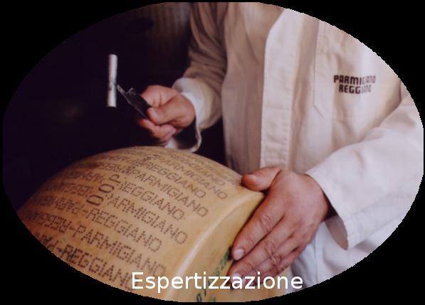 slide8-espertizzazione3